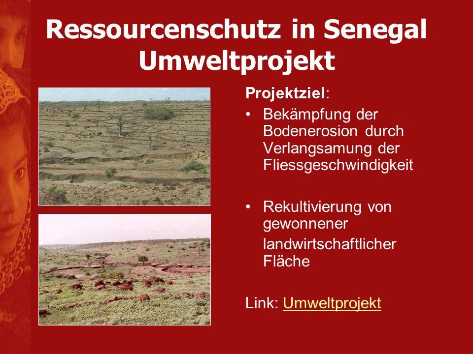 Gemütlich Wie Kann Man Die Bodenerosion Mathe Arbeitsblatt Helfen ...