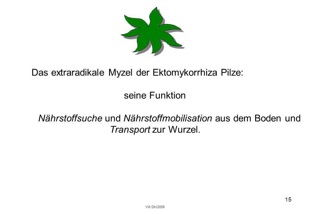 Symbiosen Vorlesung im Blockkurs Pflanzenbiologie, 2009 Teil ...