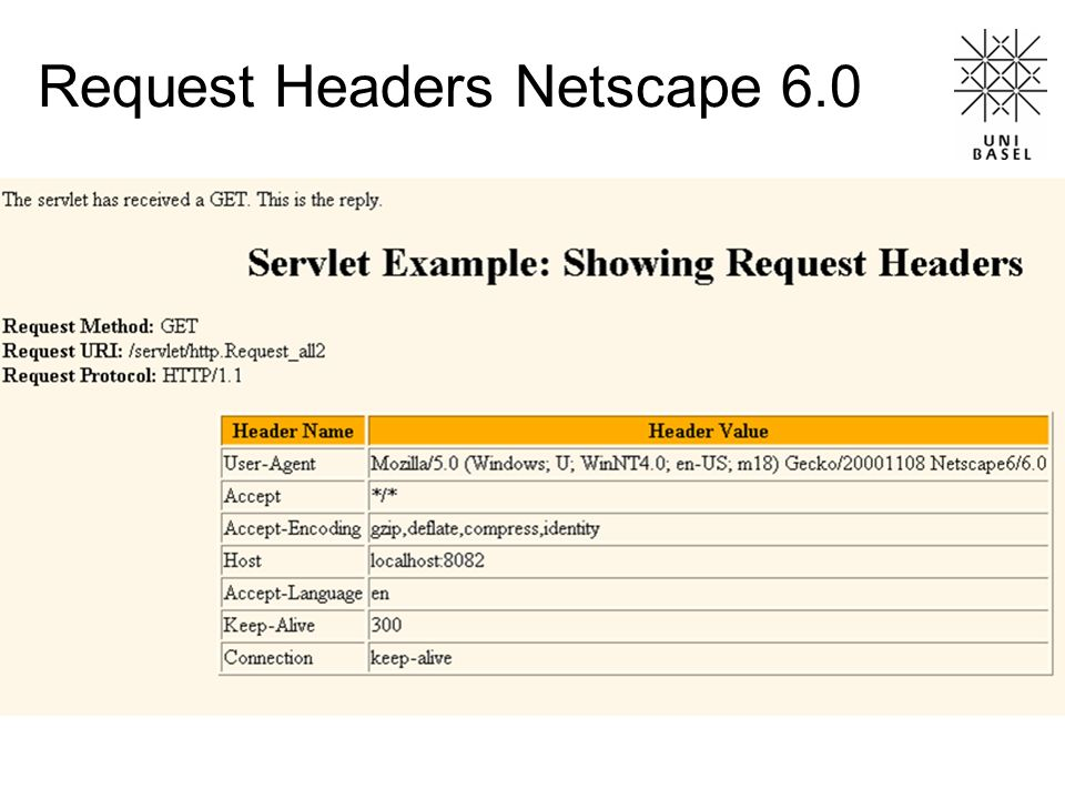 Request Headers Netscape 6.0