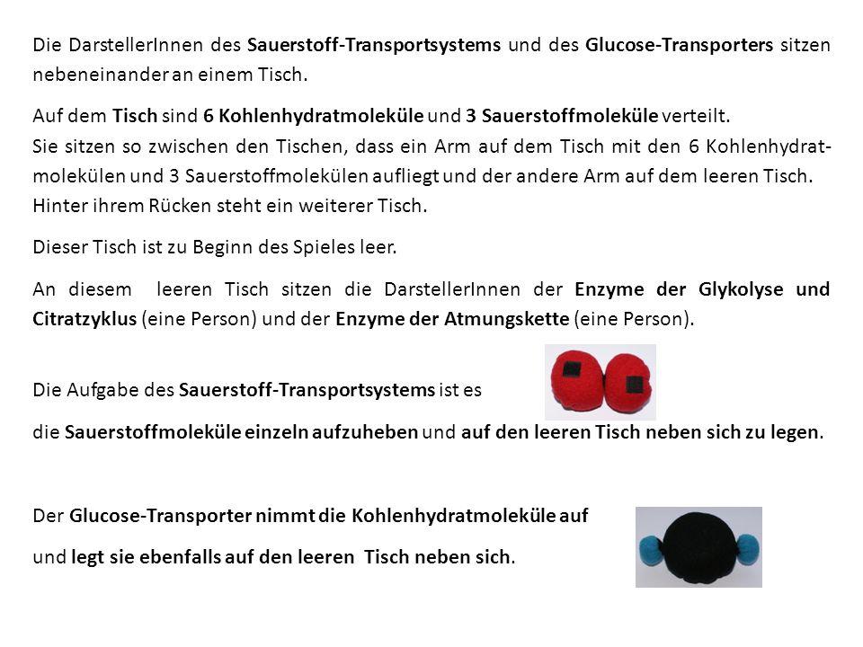 Beautiful Mit Einem Transporteur Arbeitsblatt Gallery - Mathe ...