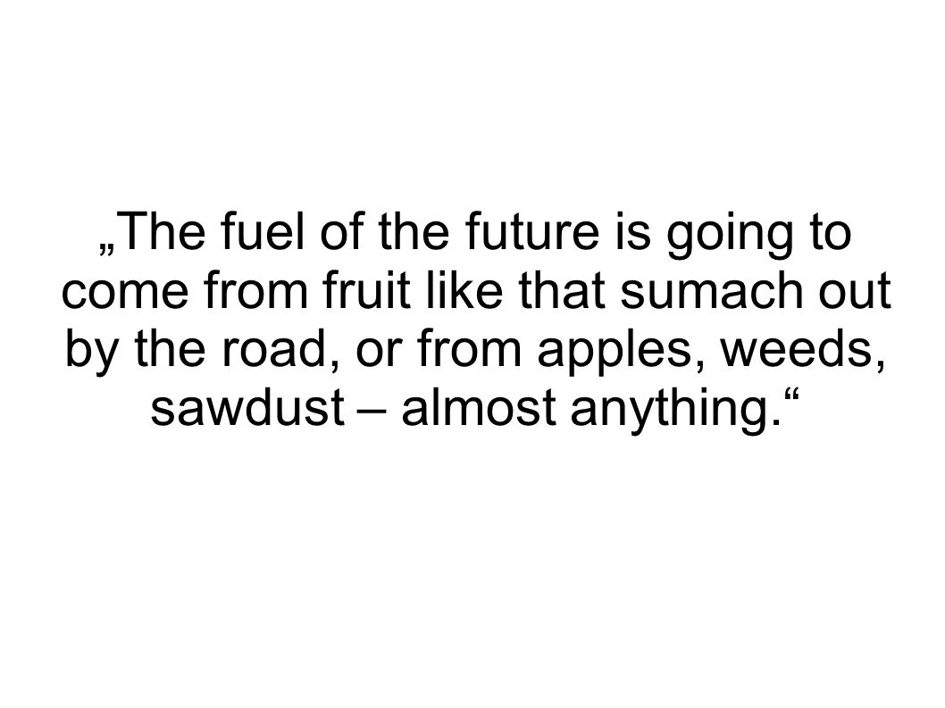 """The fuel of the future is going to come from fruit like that sumach out by the road, or from apples, weeds, sawdust – almost anything."