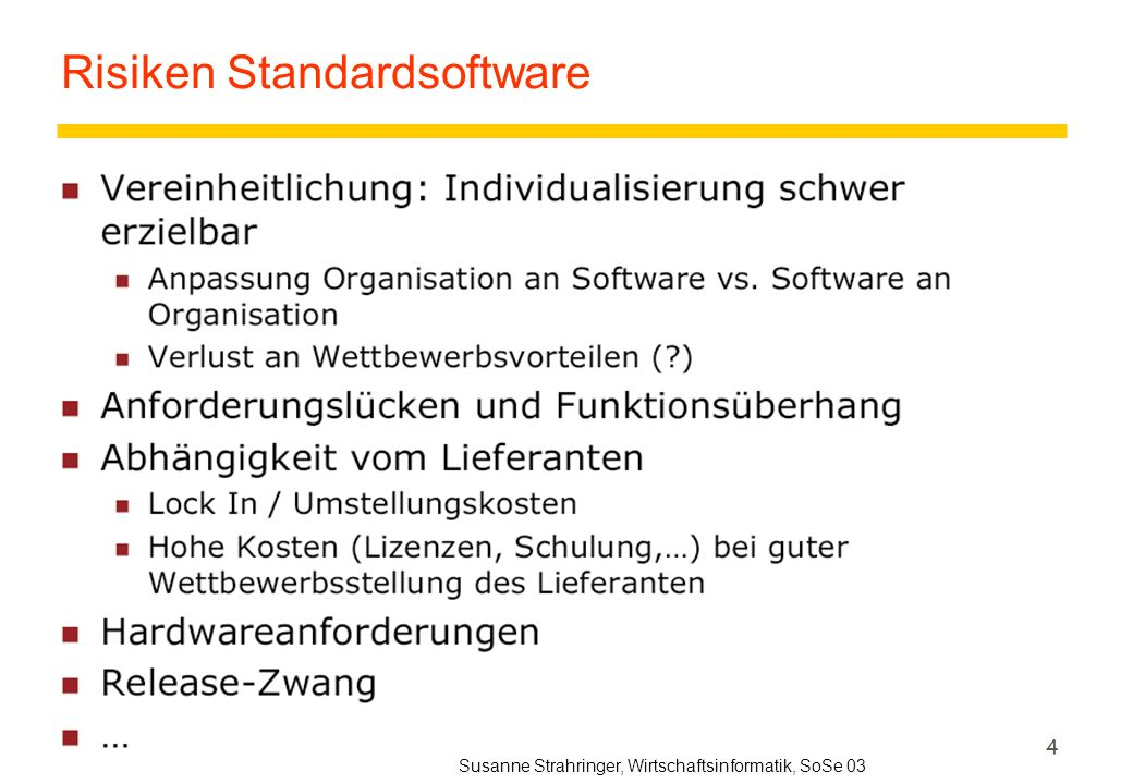 Risiken Standardsoftware