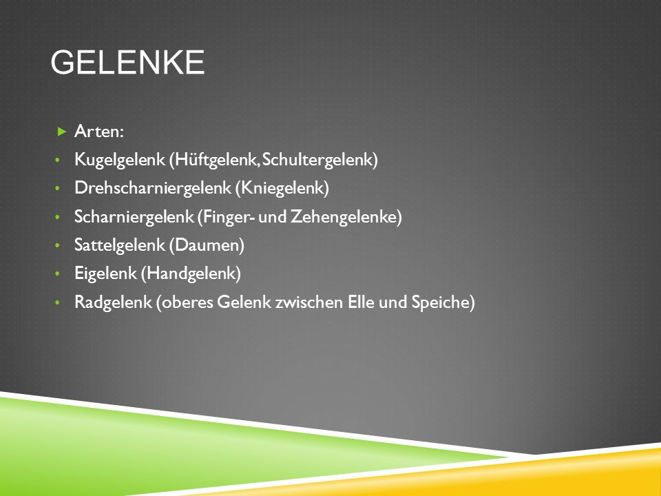 Sportbiologie Ines Weinert. - ppt video online herunterladen