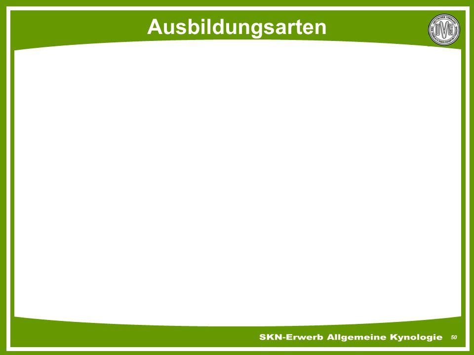 Skn Erwerb Allgemeine Kynologie Und Grundausbildung Ppt Herunterladen