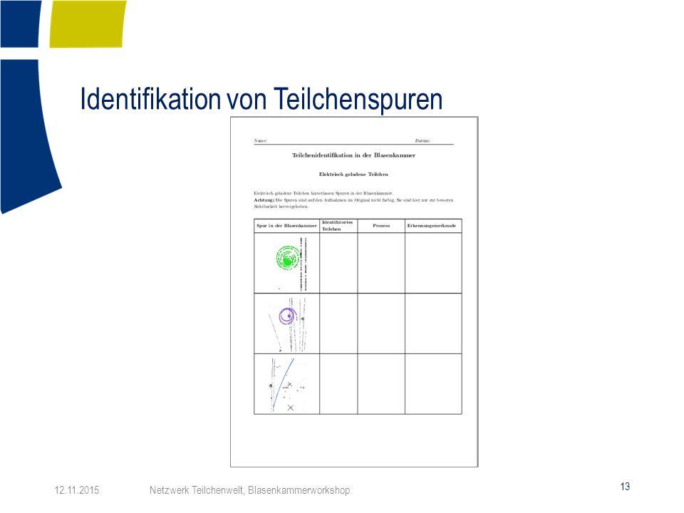 Blasenkammerworkshop NTW Jugendlichen Workshop CERN, - ppt herunterladen